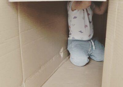die Kartonschatel als Versteck